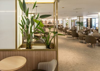 HOTEL PRESIDENTE REHABILITACION ESTRUCTURA (21)
