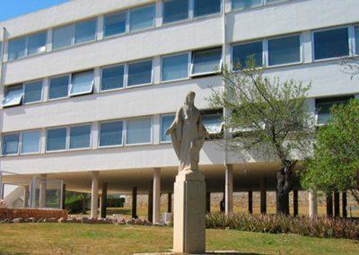 Refuerzo de estructura en Colegio Madre Alberta (PALMA).